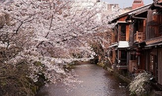 circuit-japon-gion-kyoto
